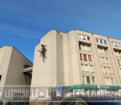 Кузнечик на стене дома Вильнюс