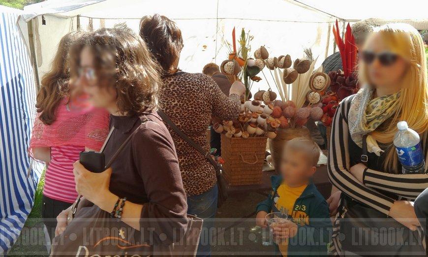 Литва тюльпаны фестиваль