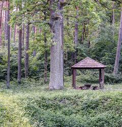 Региональный парк Нерис, познавательная тропа Karmazinų pažintinis pėsčiųjų takas